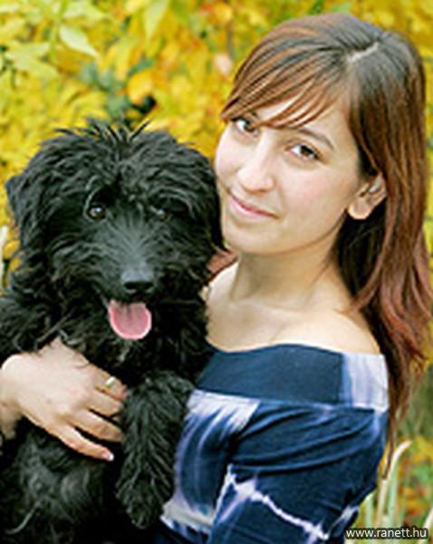 Felsővárosi kutyasétáltató helyek bővítése a komfortosabb állattartásért