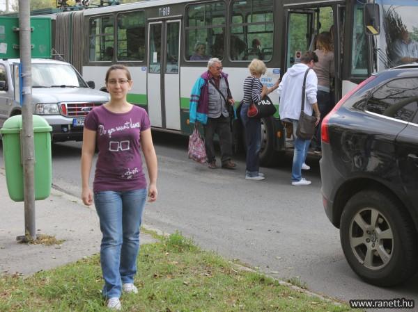 A tömegközlekedési várók és a megállókhoz tartozó útburkolat felújításra szorulnak