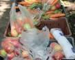 Egészséges gyümölcsöt osztottunk családoknak